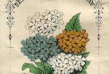 vintage botanical designs