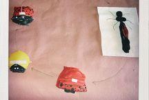 Ladybug: Homegrown Adventures