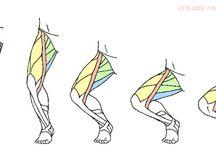 인체-다리