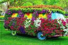 Decorated VW's / Beautiful Volkswagen