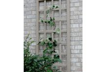 Garden - Garden Structures