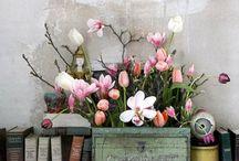 Seasonal Ideas-Springtime