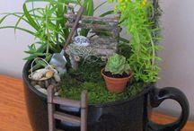 Kleine tuintjes om zelf te maken