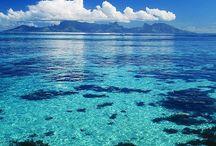 Polynesia, Melanesia and Micronesia / by Jackie LP