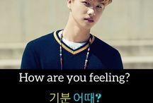Korean phrases / #korean #koreanlanguage #basicKorean #easykorean