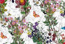 Flowery Birds Colourful