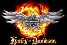 everything harley davidson / by Amy Lacey