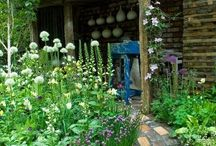 Garden Ideas / by Laurie Baxter