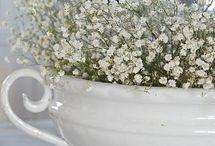 Keittokulhoja / Ihania vanhoja valkoisia erilaisia keittokulhoja, kannella ja ilman...