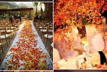 nunta romana