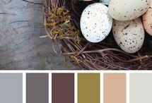 Materiales & colores