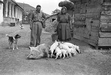 Valahol régen Magyarországon