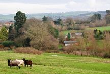 For Sale in Dorset / For Sale Dorchester, Dorset Price Guide £425,000 • Set in Approx. 6 Acres on Village Edge • Mainly Gently Sloping Pasture & Stream / Pond • Two Bedroom Barn Conversion... See more