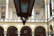 Università di Torino (tutto ciò che c'è dentro e fuori) / news foto e video a mia scelta