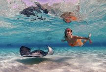 Underwater / All things underwater captured with Olympus cameras, housings and Underwater Ambassador Matt Krumins
