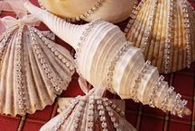 Sea shell projects / by Sherry Ross