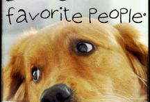 Doggone Cute Dogs ! / Can't resist these cuties.