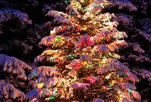 Christmas Trees Outdoor Lights Snow Decor / by Judy Marie