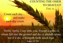 Counting the Omer to Shavuot - Pentecost / The Bible says we are to count the days stating the day after the Sabbath following Passover for 49 to Shavuot/Pentecost (the 50th day).