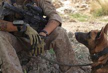 psy wojny /  o pracy, poświęceniu , oddaniu, wierności, odwadze.