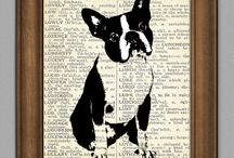 dogs and cats / by Kelly Cornelsen