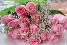 güller diyarı