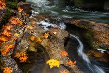 When Fall falls