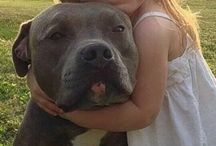 Beautiful girl an. her pit