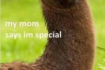 My mum says I'm special