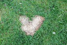 Hearts / Hearts, hearts all around. I see hearts. <3