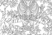 Luv Coloring - Owl