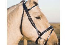 Wishlist: Horse Tack