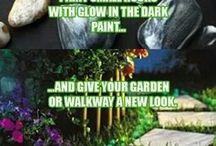 Kert és növények