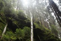 [ Travel / Malerweg trail ]
