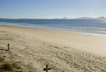 My Favourite Beaches in New Zealand