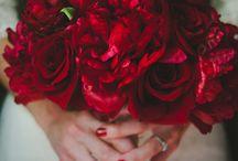 flowers / by Amy Schwartz McHugh