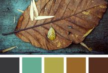 Fall color pallets / Use these Intoxicating fall color pallets to create floral designs that best compliment existing decor while bringing in the rich autumn hues we all love so much.