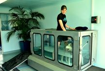 Underwater treadmill