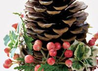 Christmas / by Kathy Brown