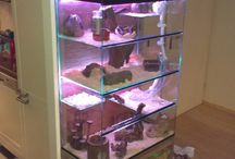 hamster cage diy