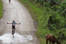 Idées destinations à vélo / Préparer un voyage passe beaucoup par l'imaginaire et le visuel. Rien de tel que des photos pour donner envie d'aller au bout du monde !
