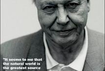David Attenborough x