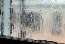 Rain / by Elyon Osaki