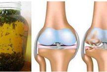 cartilagine ginocchio