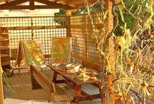 Reggio inspired outdoor spaces