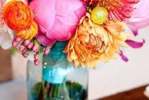 Flower Garden / by Michelle Huntsman-Tessers
