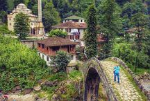 Rize, Turkey, green nature,