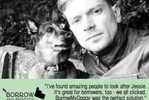 Waggy Tales / The latest woofs from BorrowMyDoggy Owner and Borrower members :)