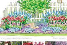 Ogród co sadzić