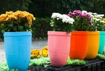 Gardening/Κηπουρική/ Balcony deco